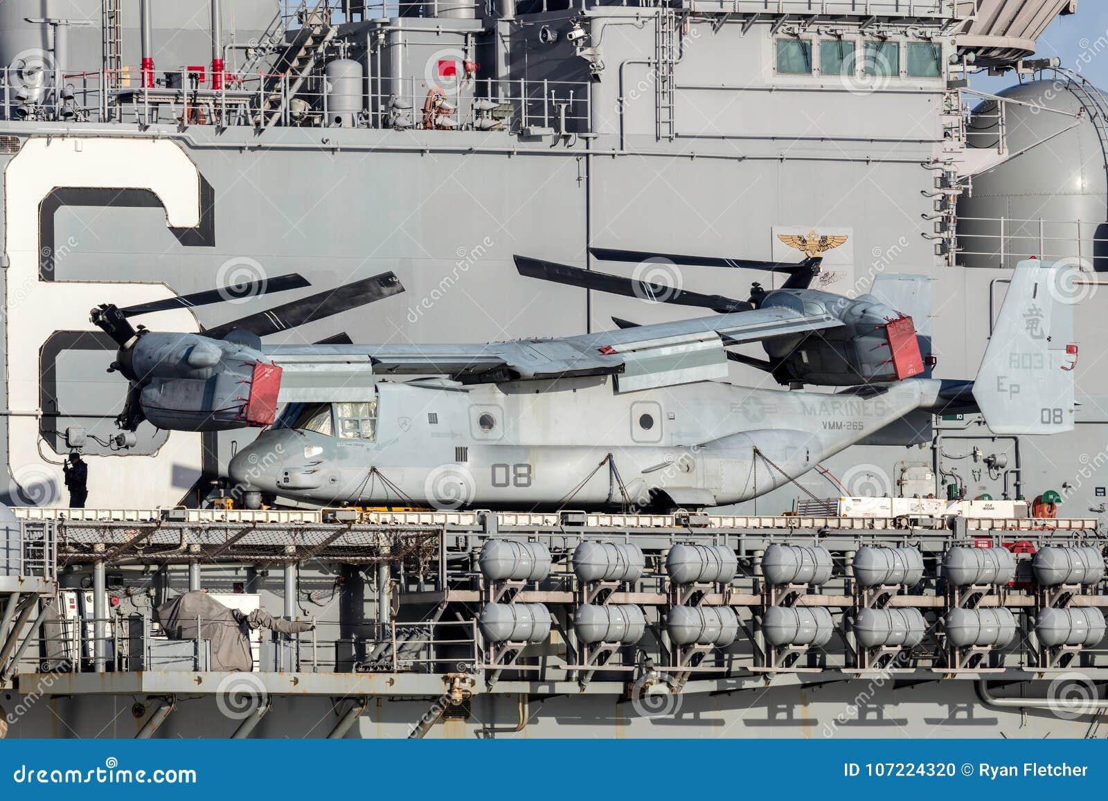 Dzwonkowy Boeing MV-22 rybołowa plandeki rotoru samolot od Stany Zjednoczone korpusów piechoty morskiej