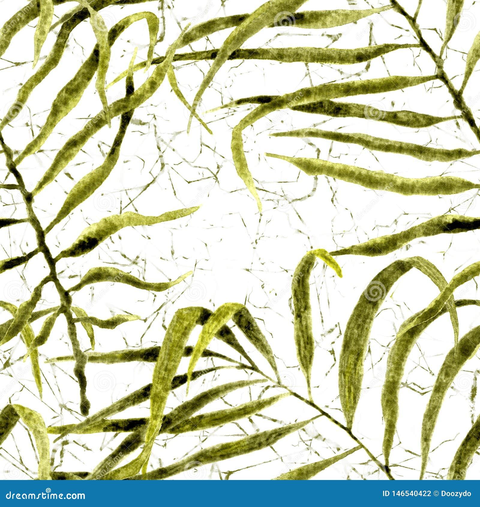 E Ταλαντεμένος φοίνικας Watercolor