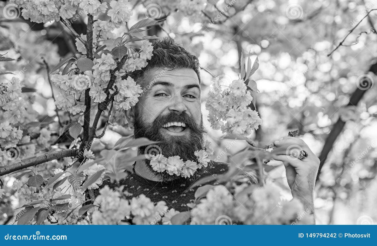 E   有胡子的在愉快的面孔的人和髭在嫩桃红色附近