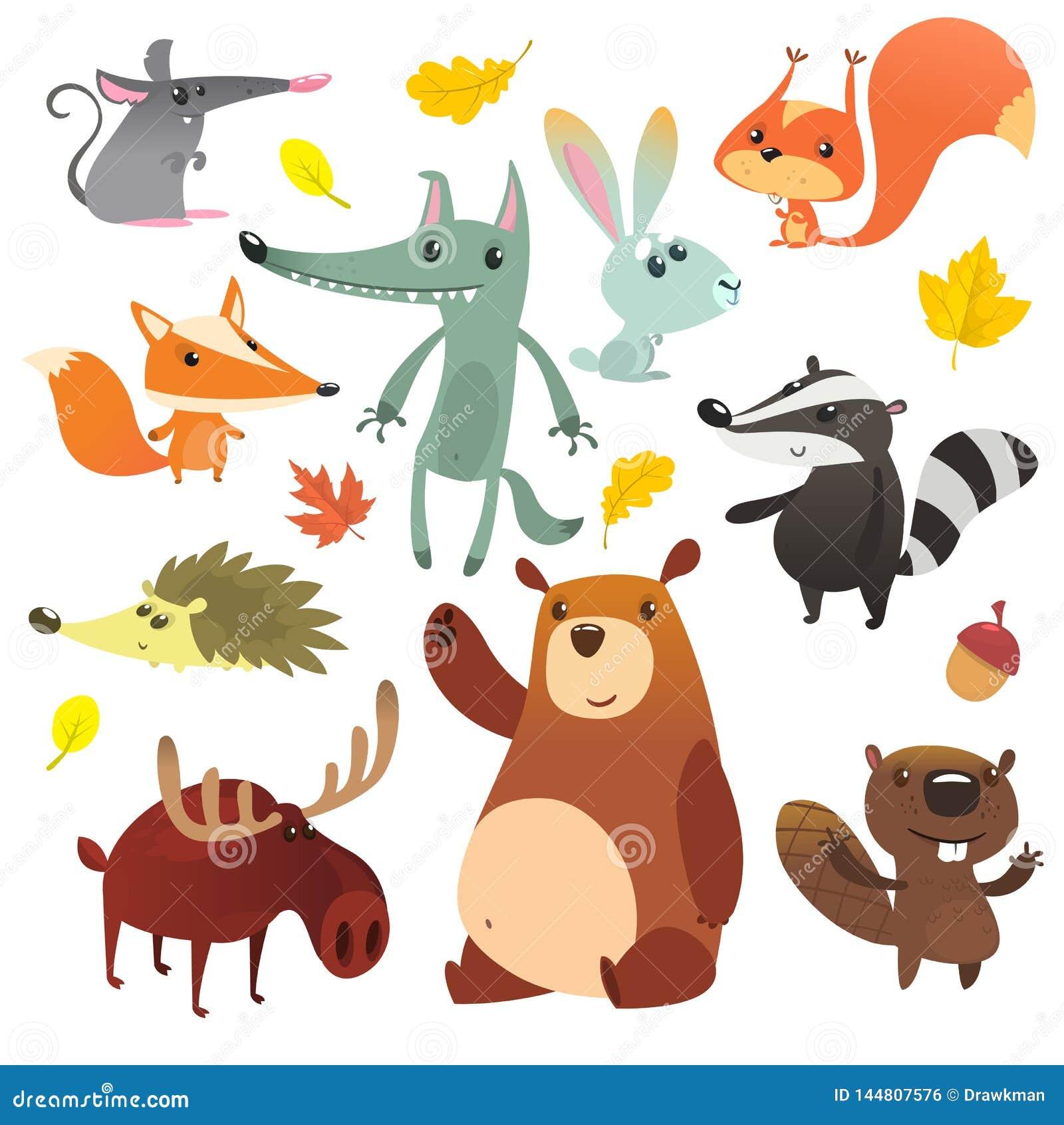 E 滑稽的动画片动物集合