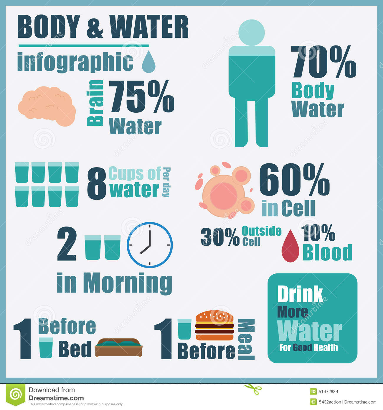 importance of water in the human body pdf
