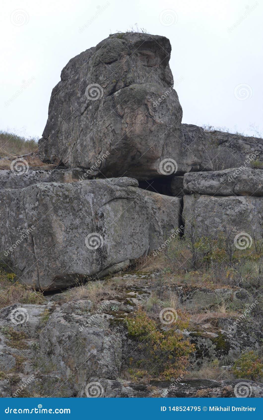 E Mos op stenen