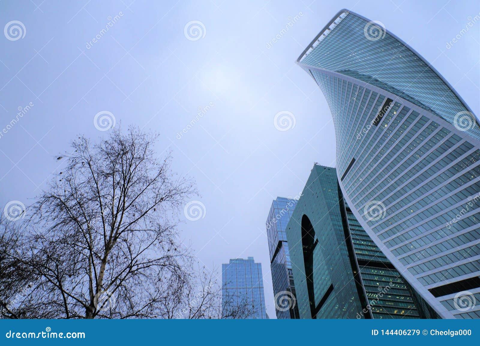 E r ?? 商业中心的玻璃高层建筑物 城市和自然的概念