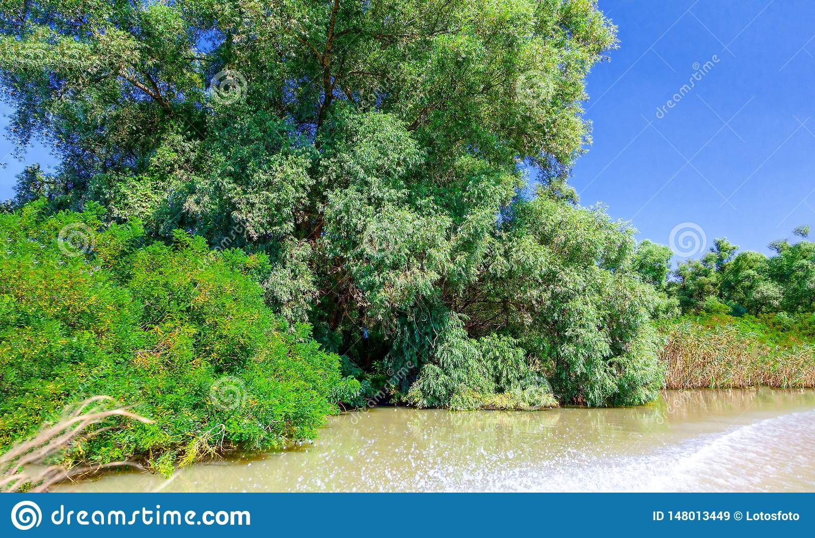 从汽艇的看法向美好的自然和河