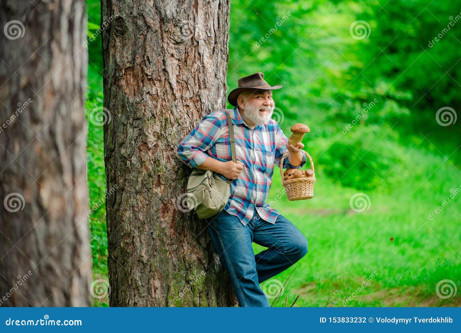 Величающ в лесе, грибы звероловства деда над предпосылкой леса лета Грибы лета Зрелый человек с