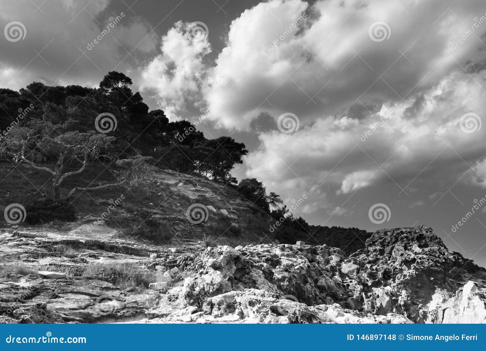 E Tremiti-Inseln Apulien Italien