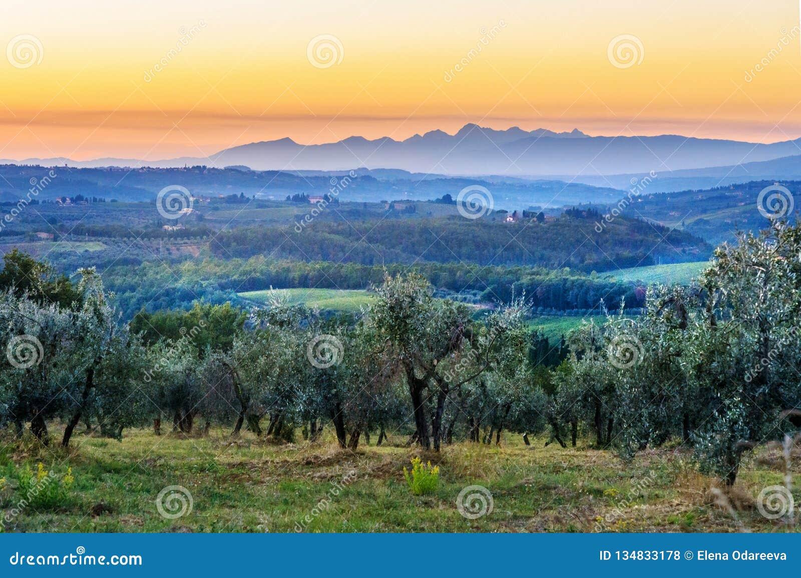 E tuscany l Italie
