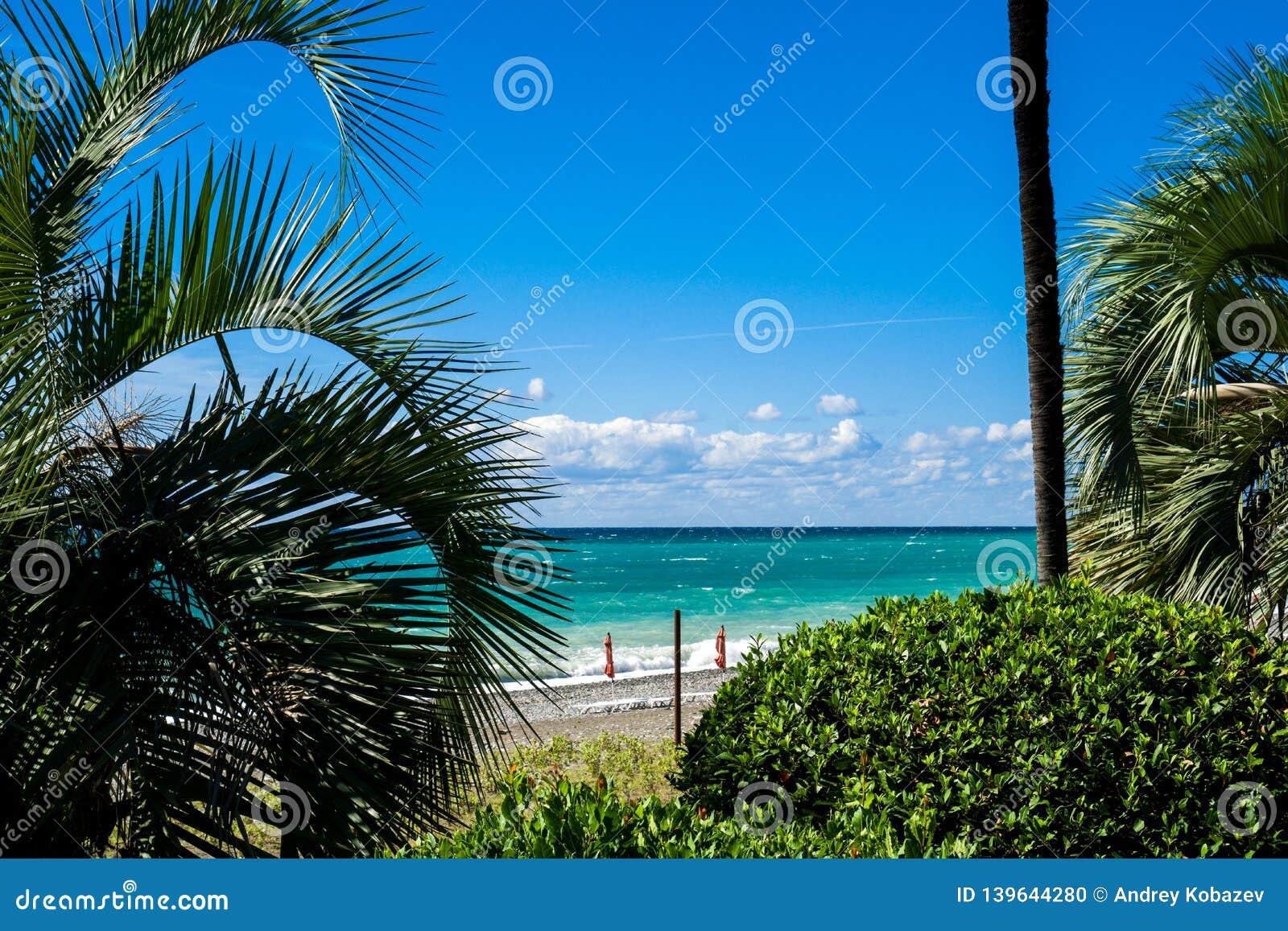 E Vistas do mar azul claro