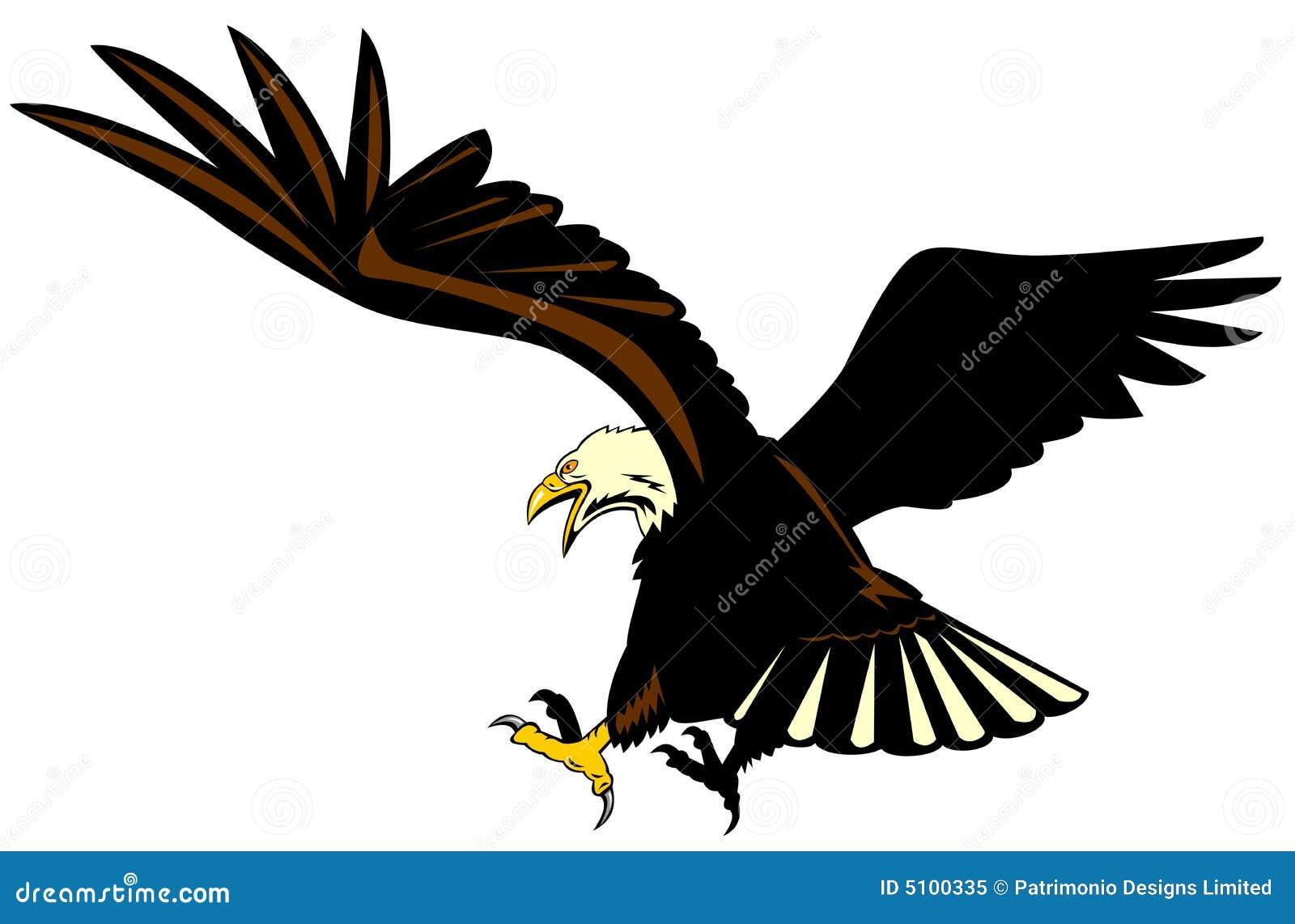 Eagle attacking stock illustration. Image of flight, bald ...