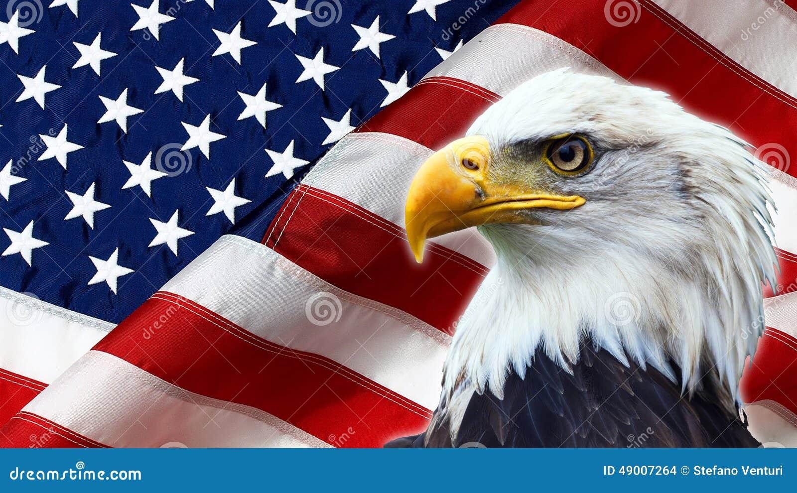 eagle calvo norteamericano en bandera americana foto de archivo imagen 49007264 And Flag American Eagle Vehicleclipart American Flag and Eagle Clip Art Black and White