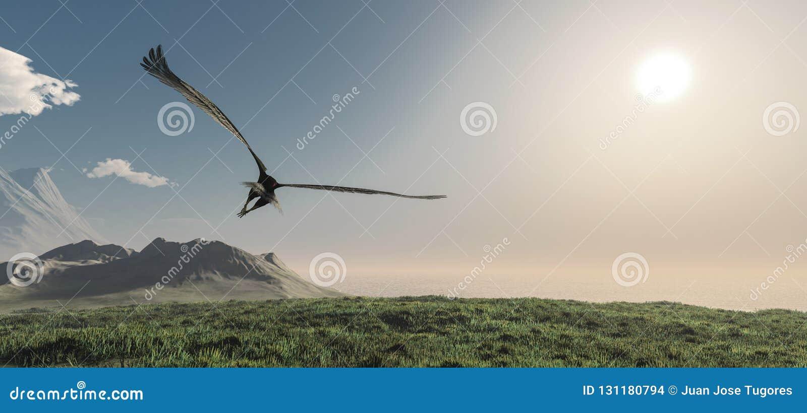 Eagle die in de wolken vliegen