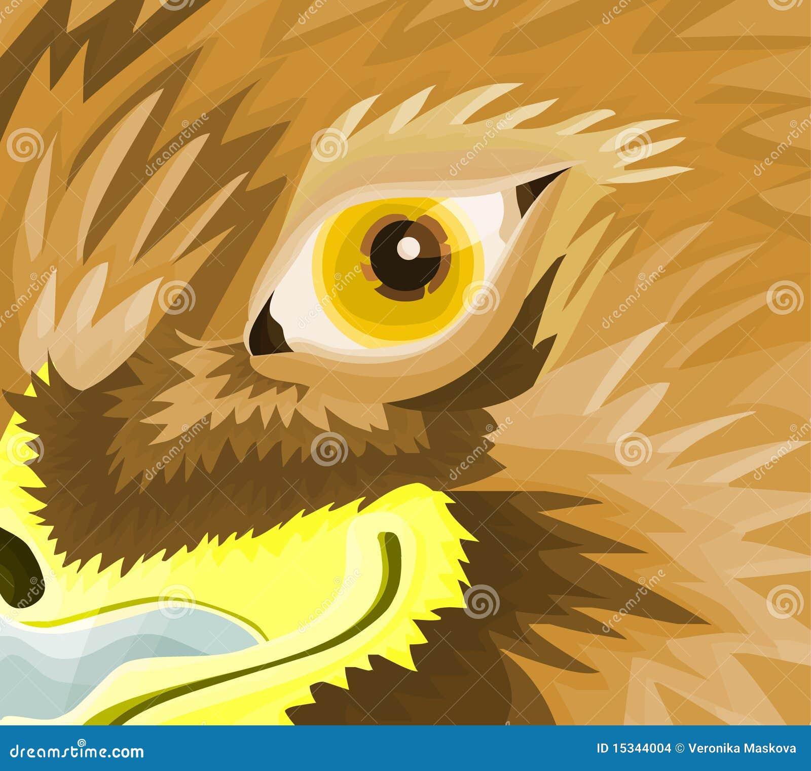 eagle eye timing