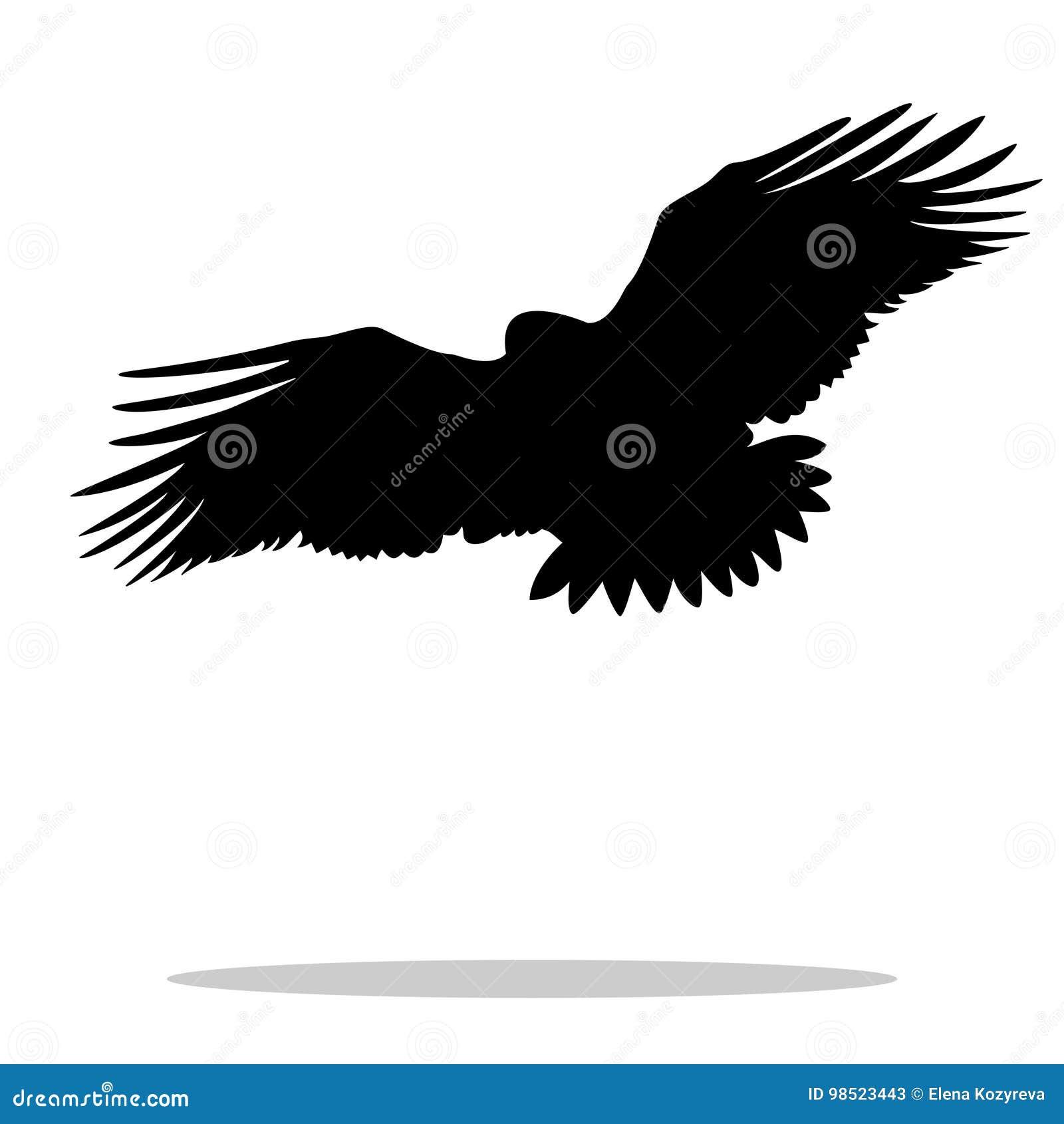 Eagle-Falkesteinadlervogelschwarz-Schattenbildtier