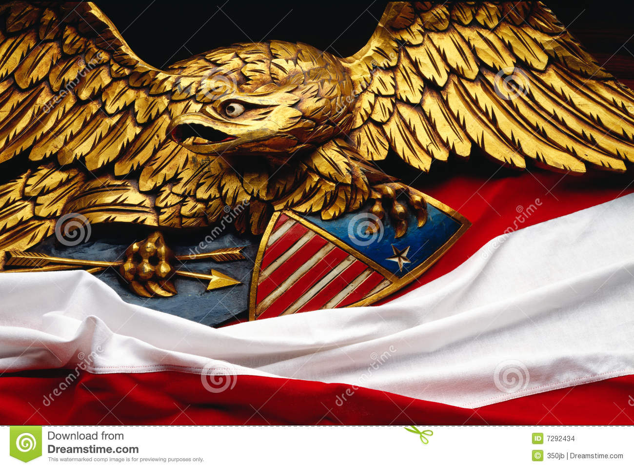 Eagle with flag