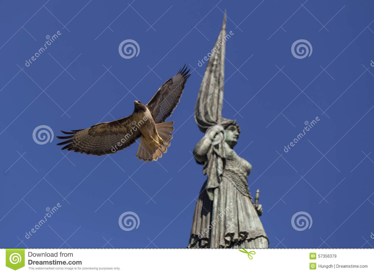 Eagle Flying Pass By Statue Stock Image - Image of flying, eagle