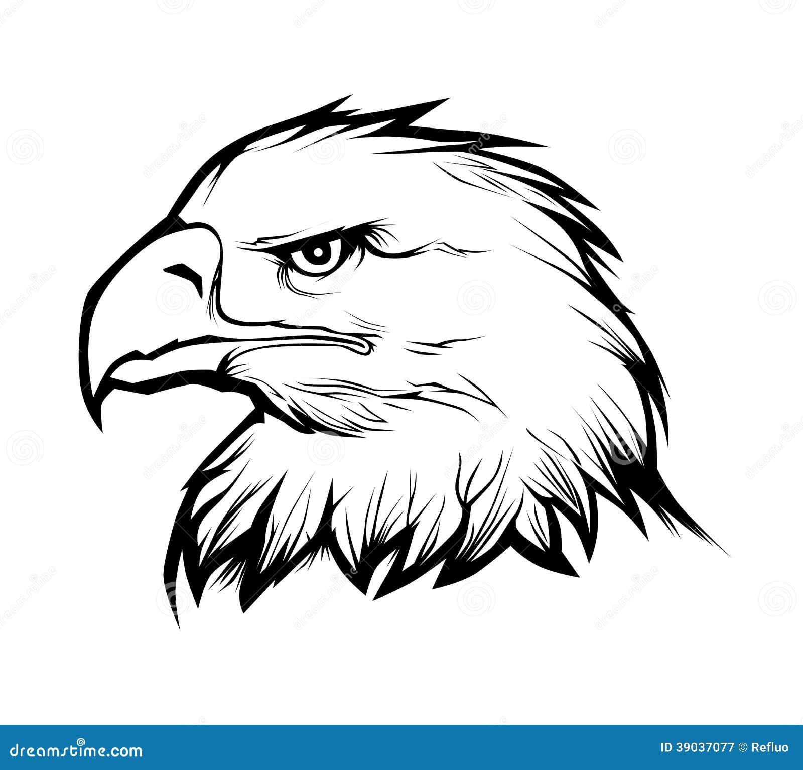 Eagle head Royalty Free Stock  Eagle Head Vector