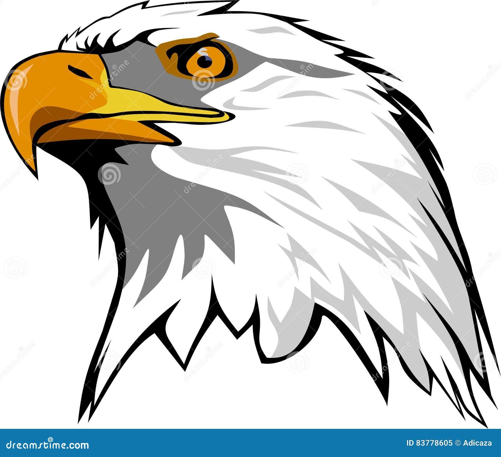 Eagle Head Stock Vector. Illustration Of Predator, Lineart
