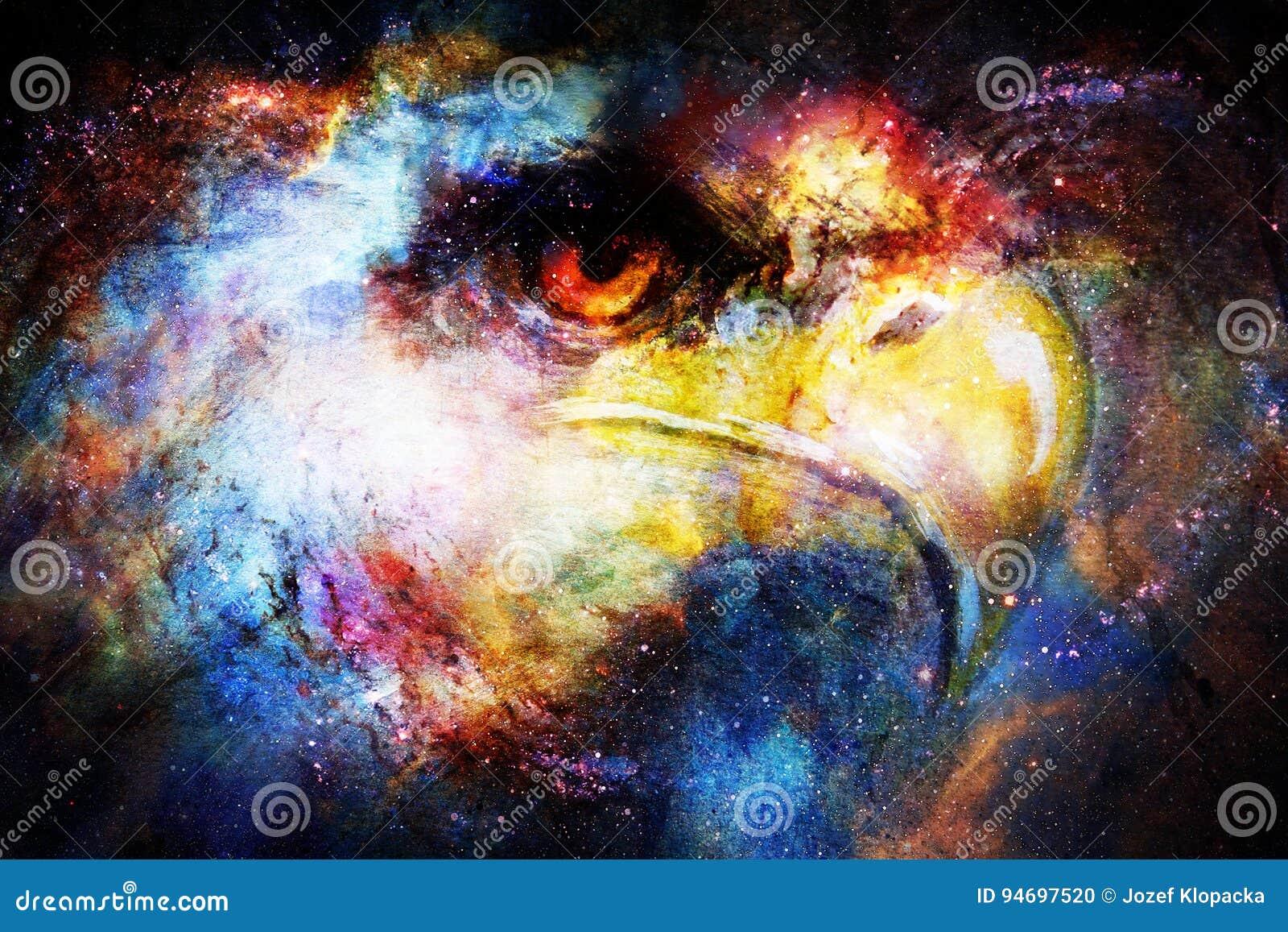 Eagle huvud i kosmiskt utrymme Djurt begrepp för ståendeprofil för bakgrund par isolerat barn för white