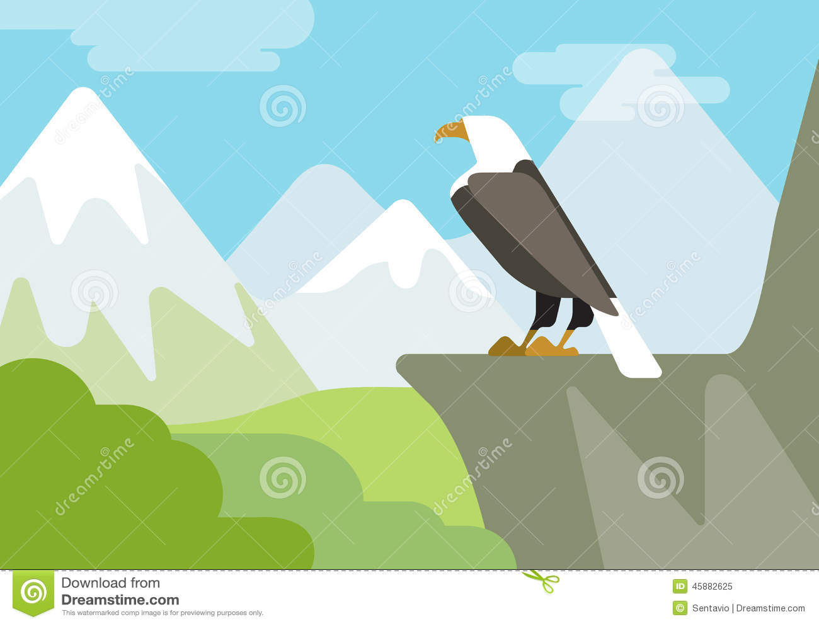 ... Cartoon Vector Wild Animals Birds Stock Vector - Image: 45882625