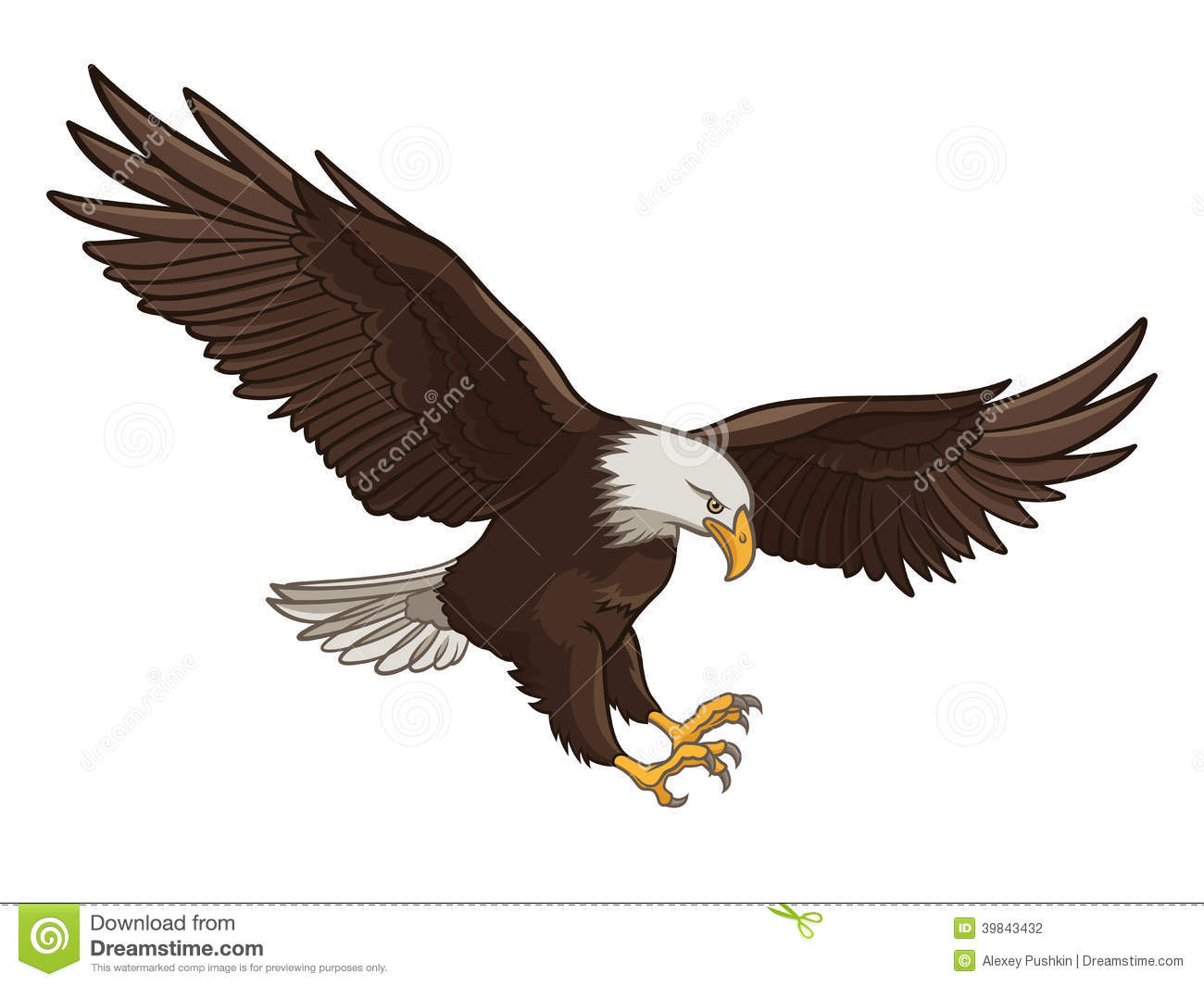 Vector illustration of a Bald Eagle, isolated on a white background.