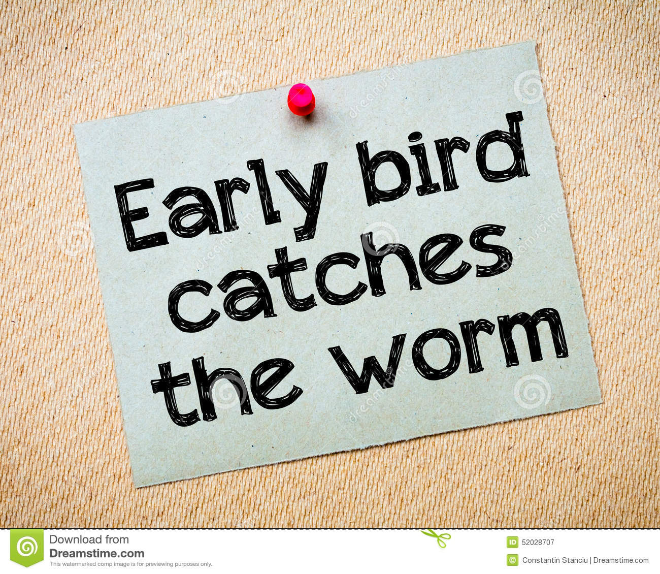 the early bird catches the worm essay