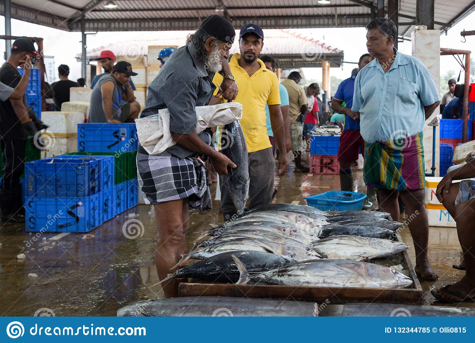 Early Morning Fish Market In Negombo, Sri Lanka Editorial Image