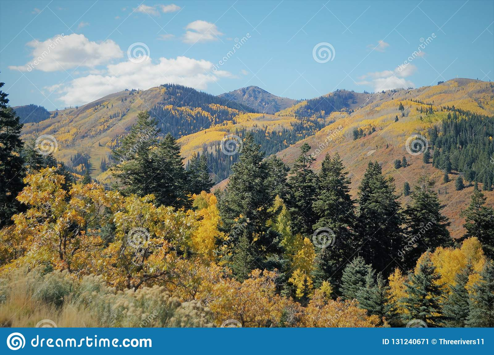 fall in deer valley stock image. image of hiking, united - 131240671