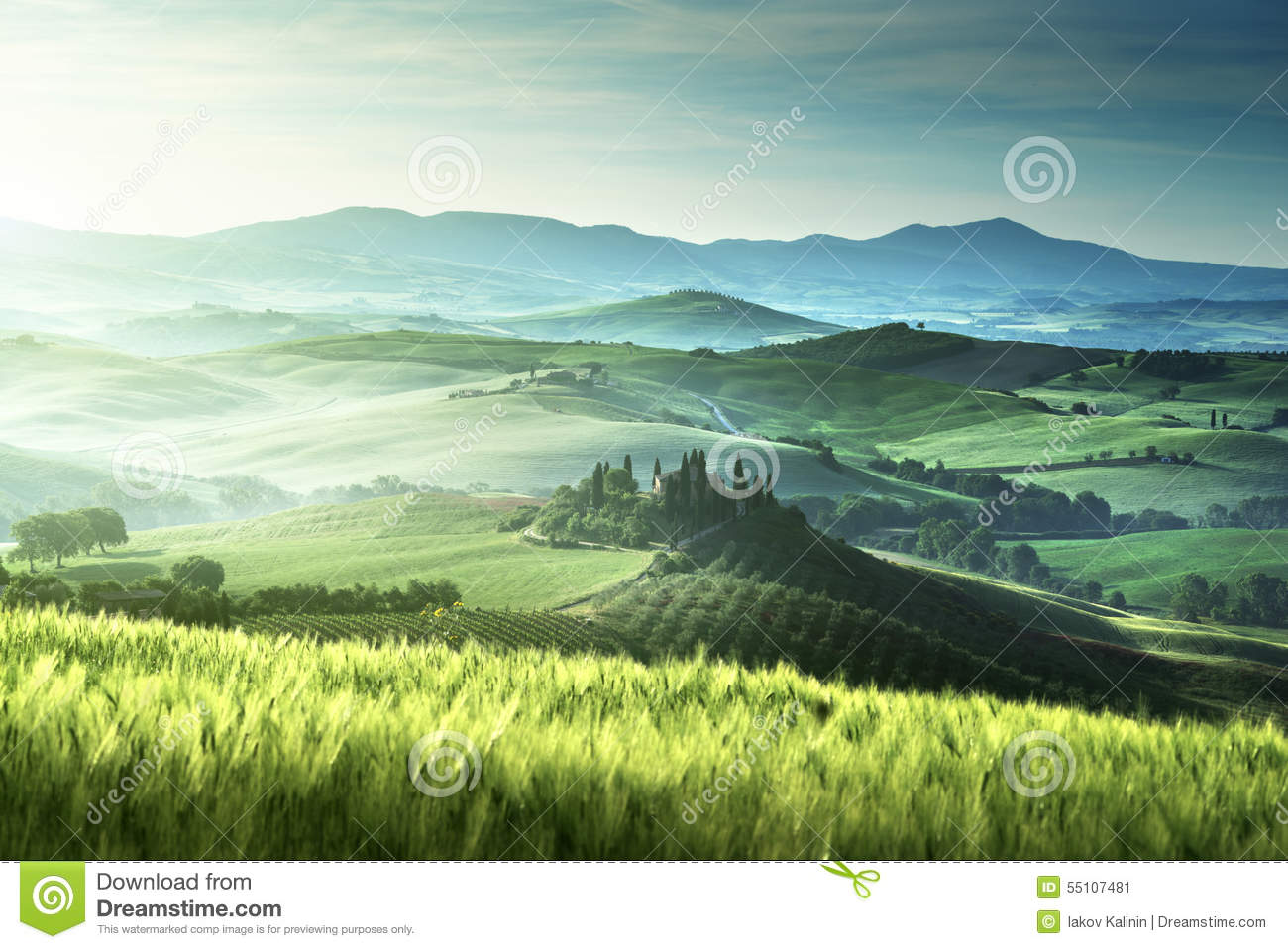 Download Early Spring Morning In Tuscany, Italy Stock Image - Image of house, foggy: 55107481