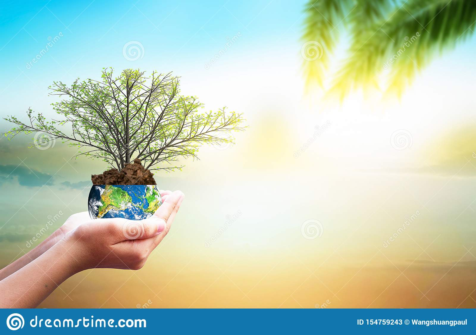 Earth Day Concept: Hand Holding Earth Globe And Tree Over ...