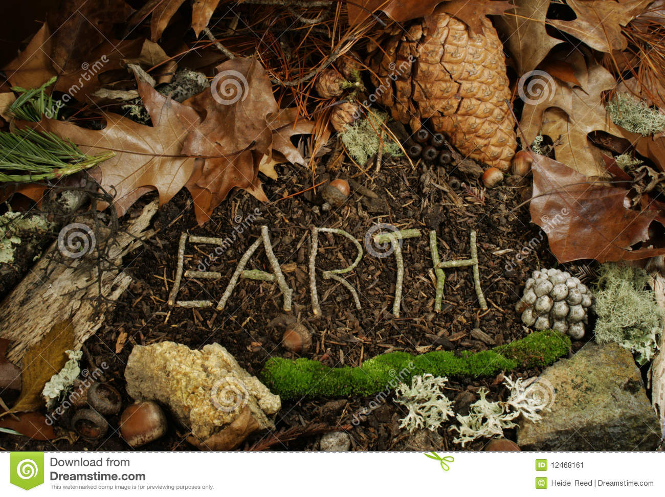 Earth spelled in twigs on forest floor stock image image for Earth or soil