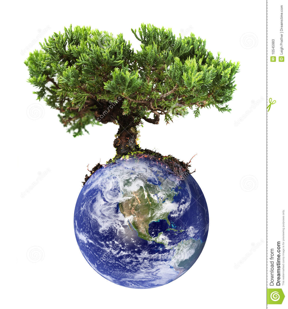 earth tree stock photos image 10545983 planet clip art free plant clipart