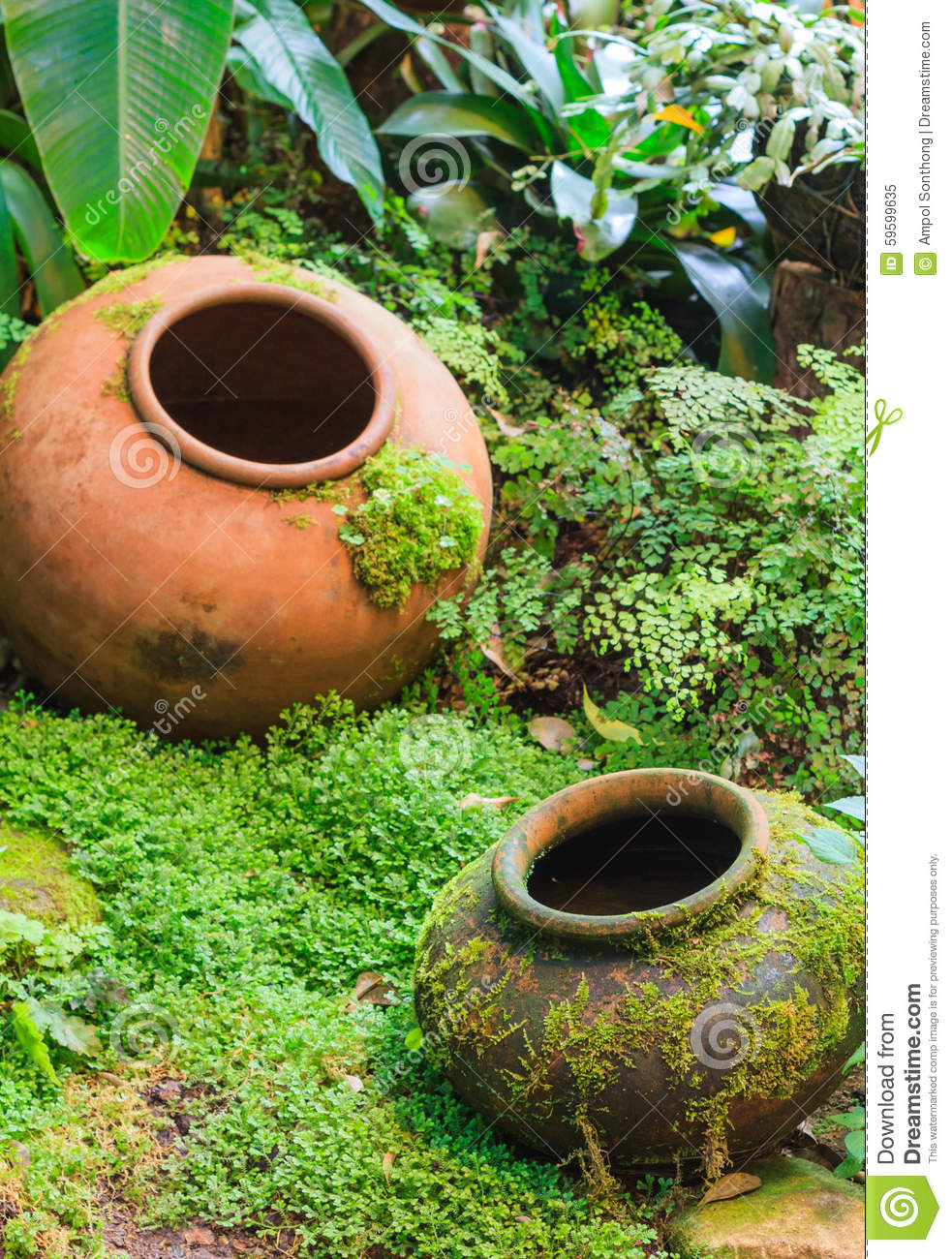 earthen jar tropical garden decoration stock photo - image: 59599635