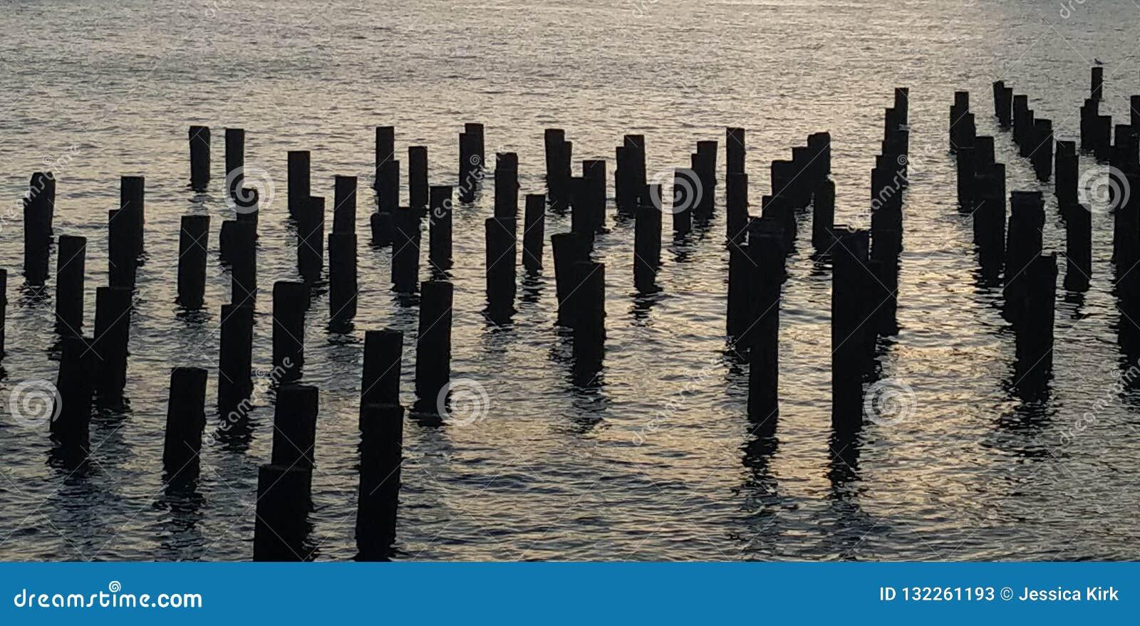 East River pier pilings remnants as photgraphed from Brooklyn Bridge Park