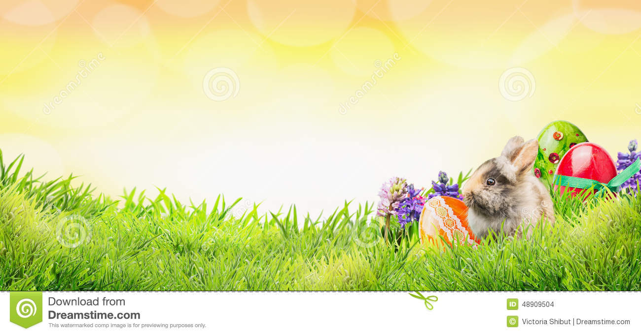 Easter background with bunny, eggs and flowers on grass and sunny sky with bokeh, banner