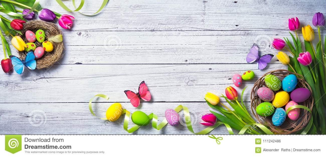 Easter background. Colorful spring tulips with butterflies and p
