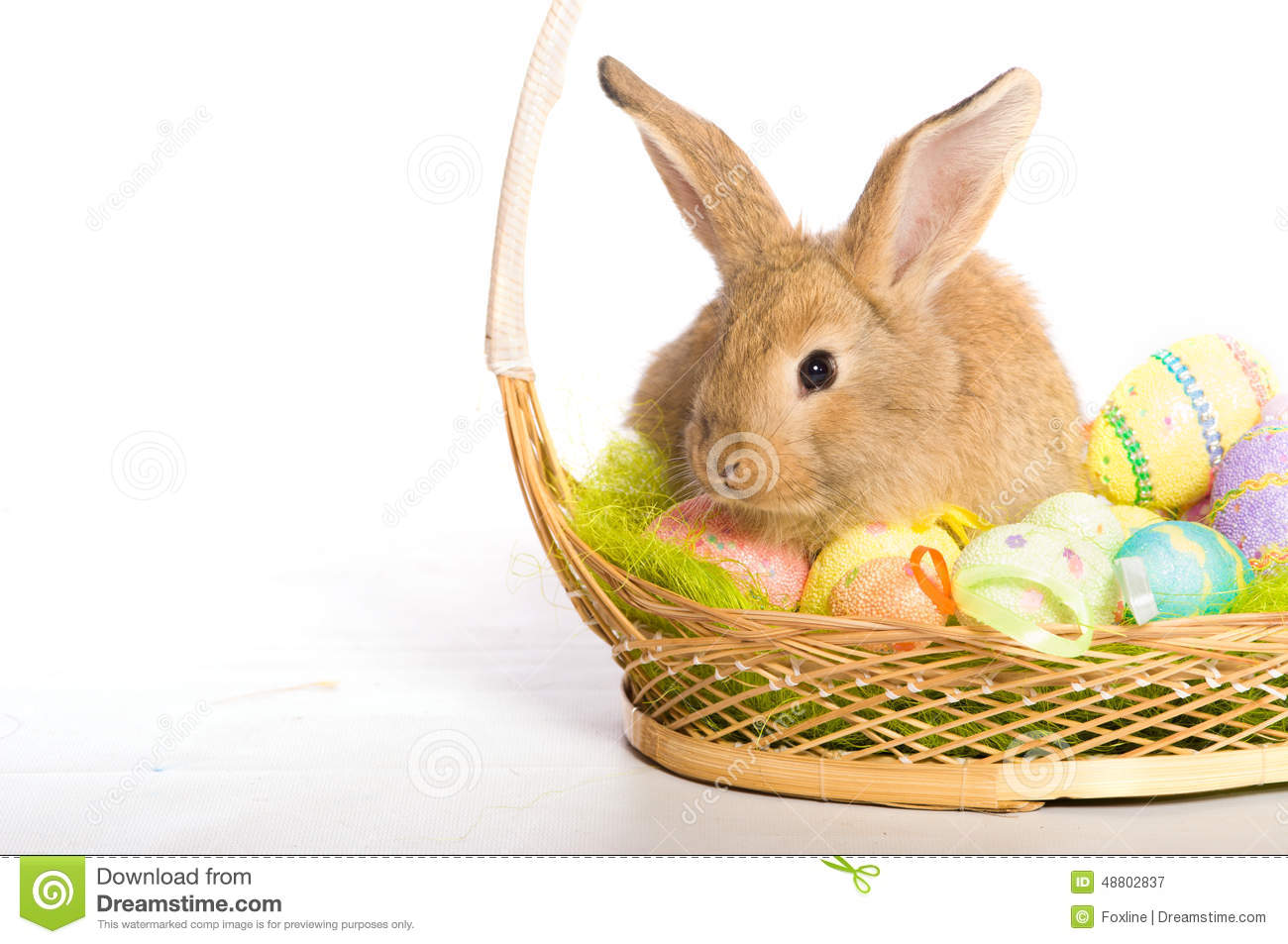 Easter Bunny With Easter Eggs And Yellow Basket Royalty
