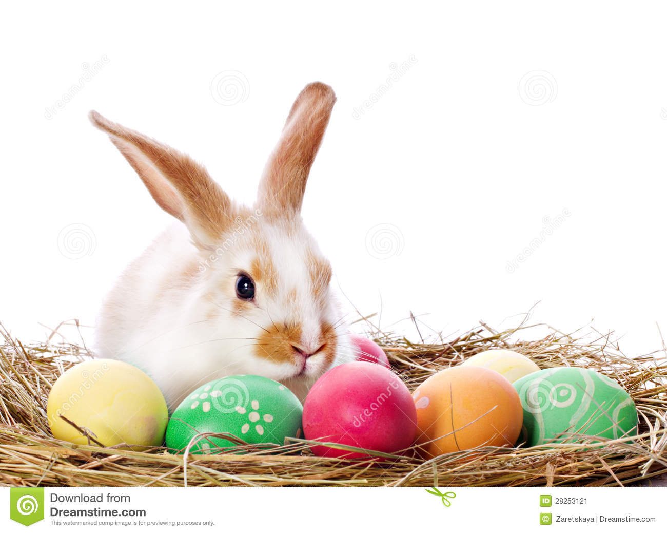 Clipart Easter Eggs And Bunny