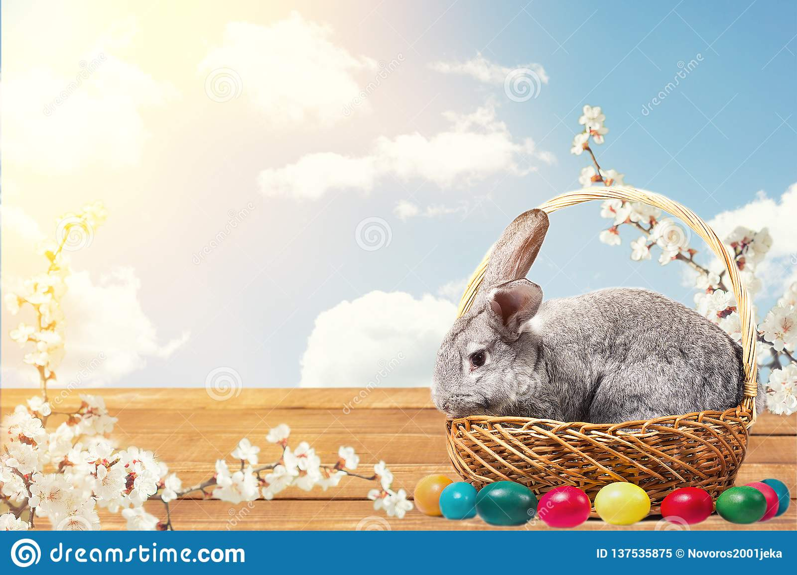 Easter bunny with eggs in a basket
