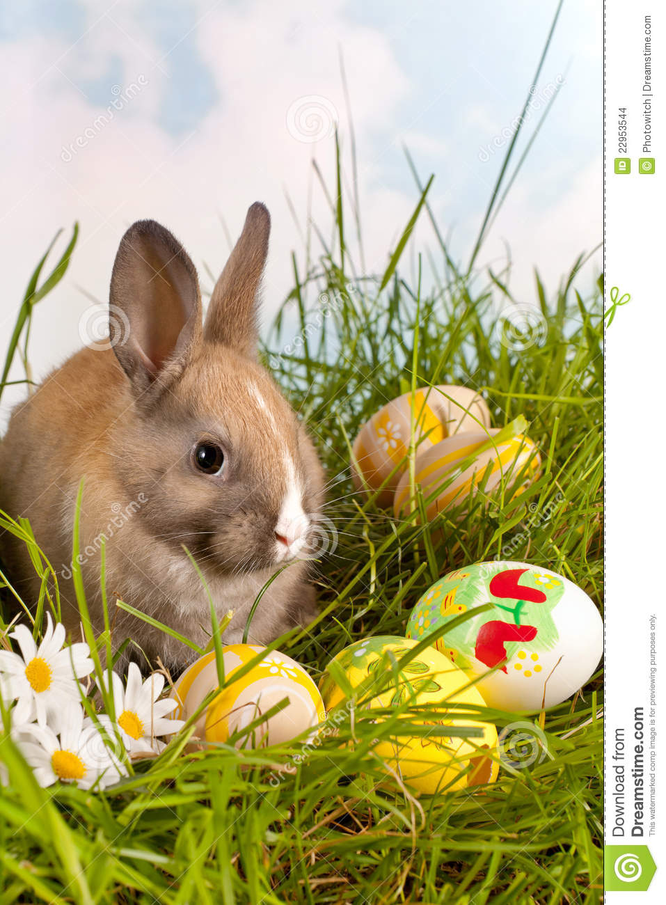 Easter Bunny And Painted Eggs Stock Photo - Image of eggs ...