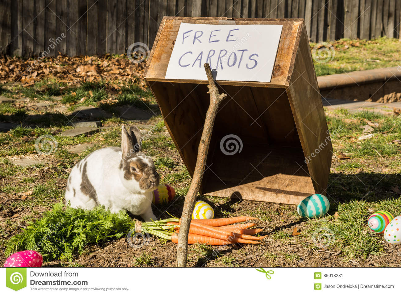 The Easter Bunny stock image. Image of happy, easter ...