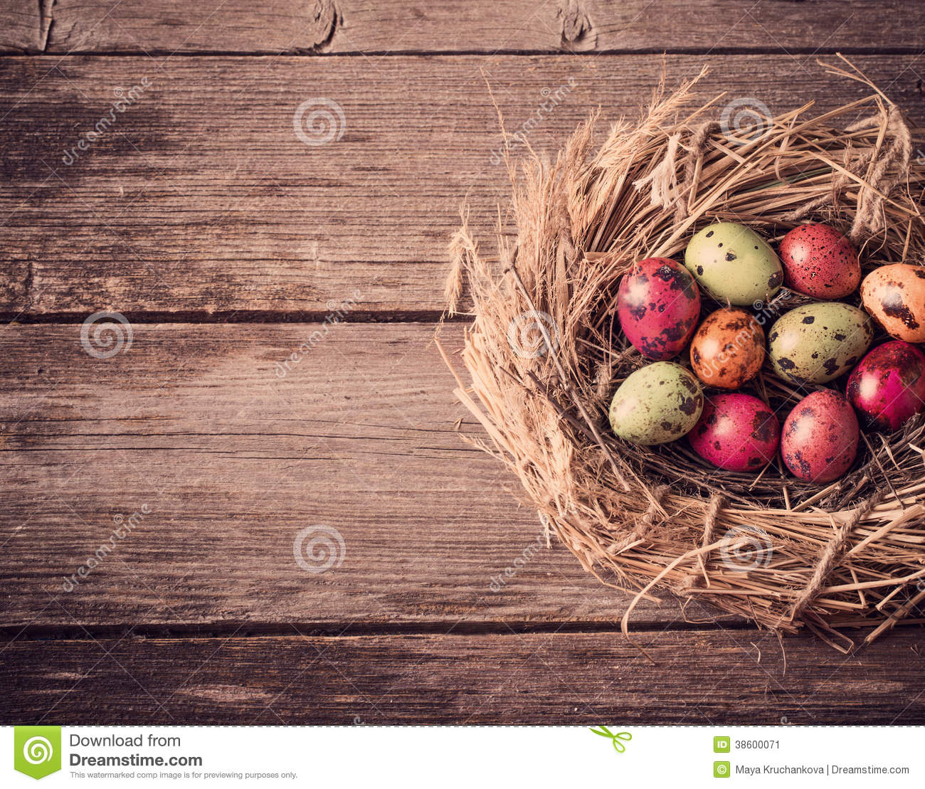 easter egg nest on wooden background stock image image