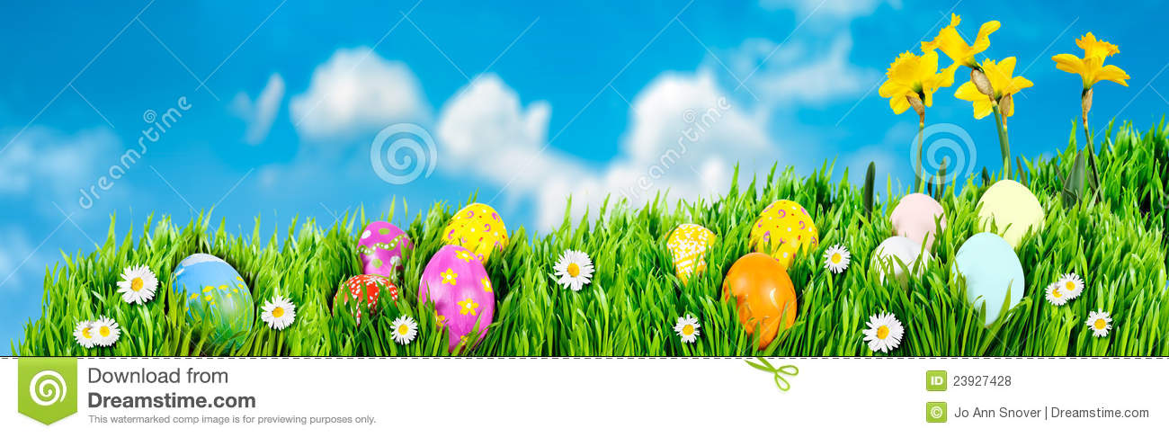 Download Easter Egg nests stock photo. Image of easter, yellow - 23927428