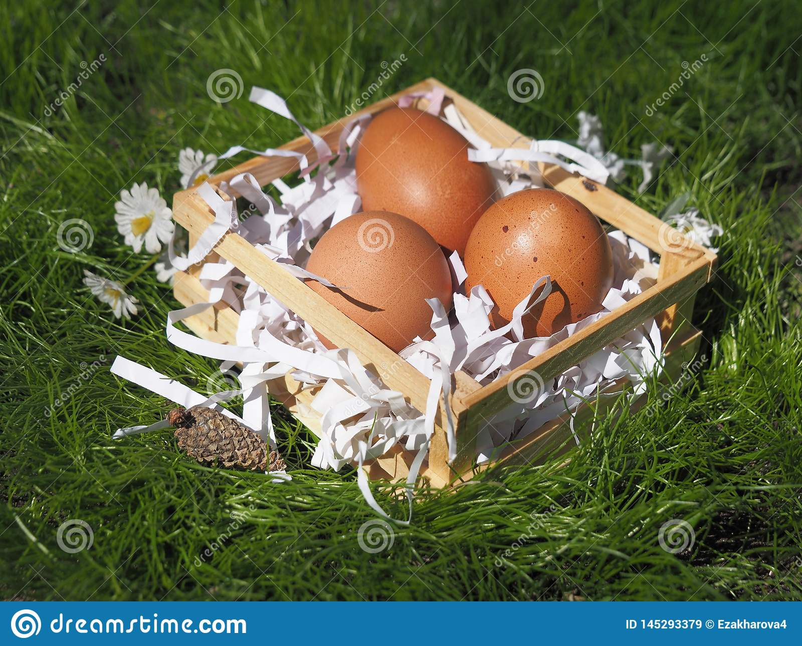 Easter eggs in a basket on the grass