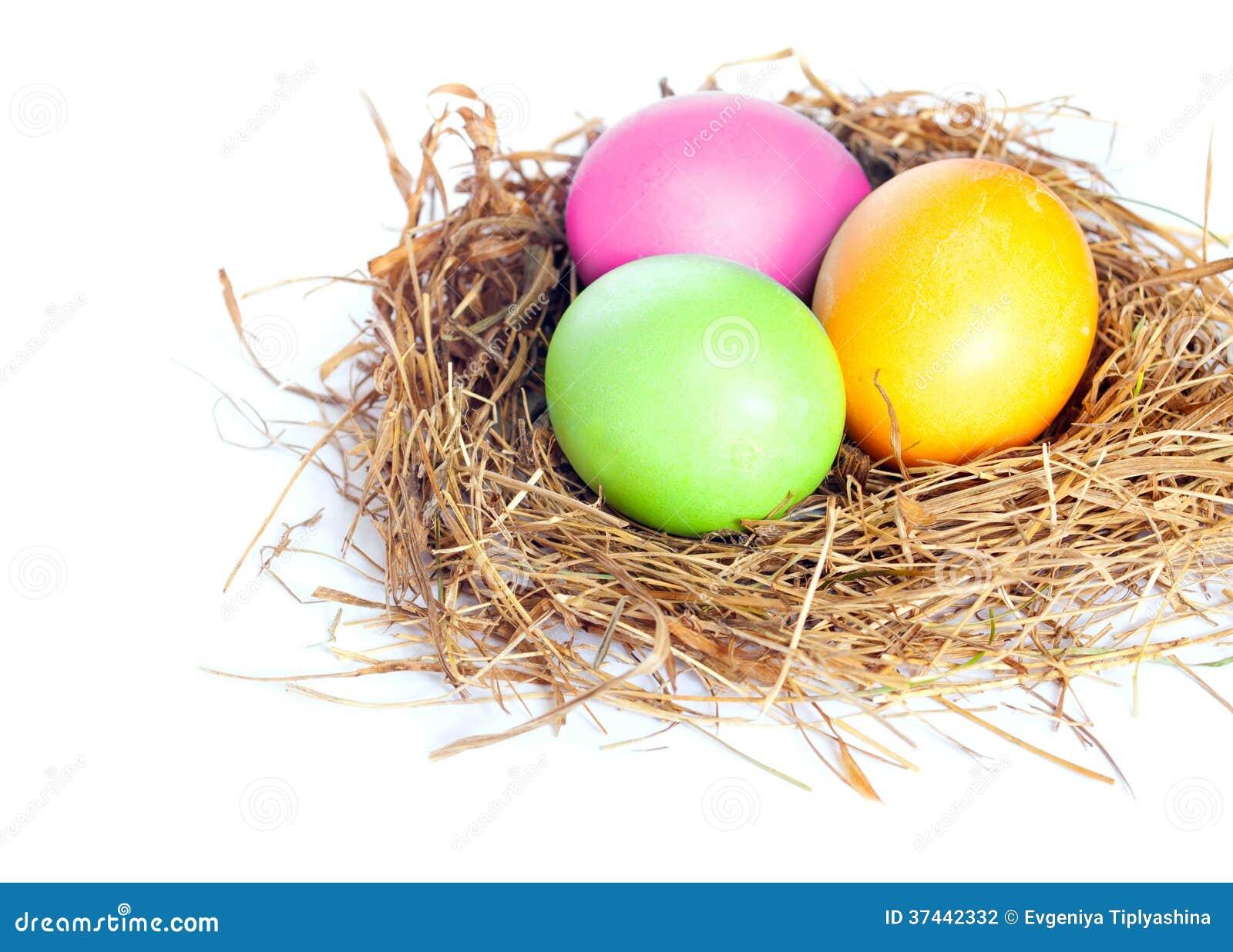 easter eggs in bird nest stock photography image 37442332. Black Bedroom Furniture Sets. Home Design Ideas