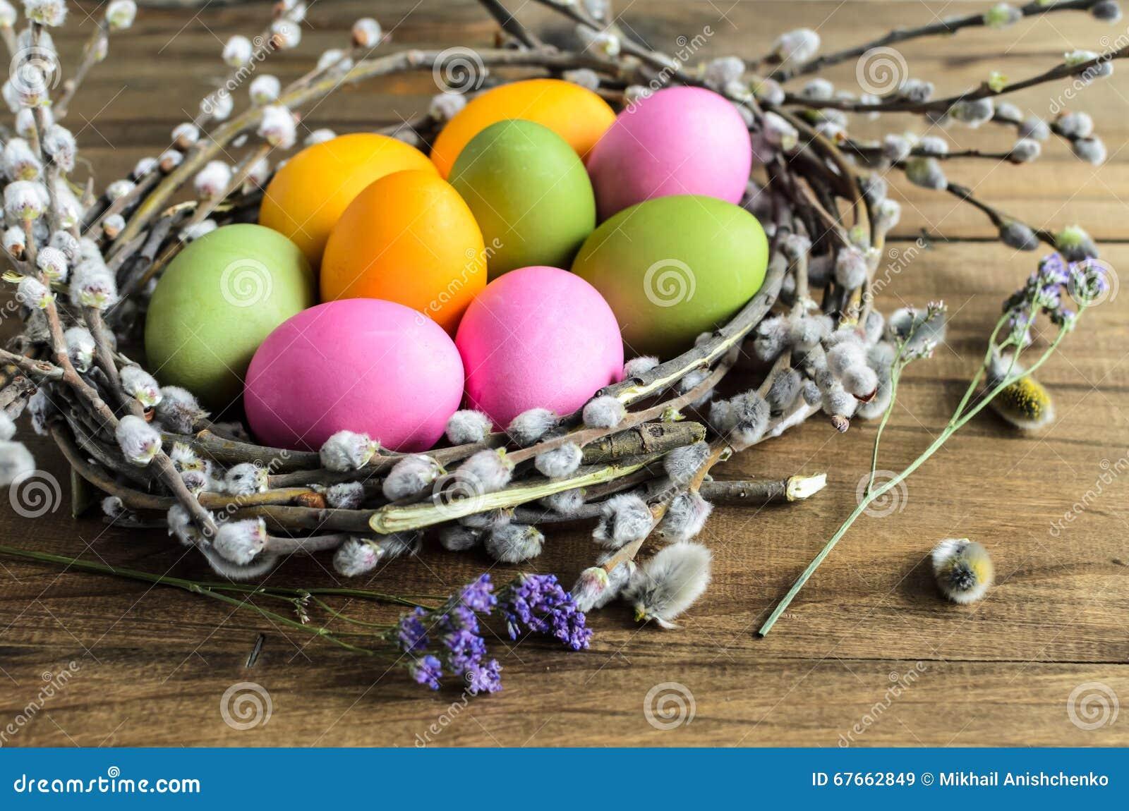 Home Make Eggs Food For Bird