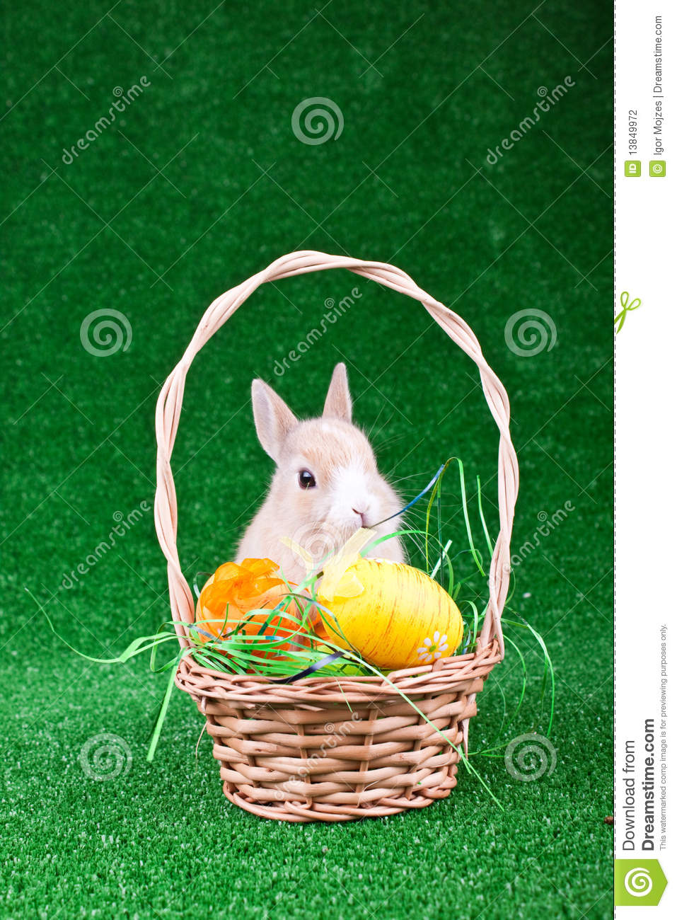 Easter nest with rabbit stock photography image 13849972 for What is the easter bunny s phone number