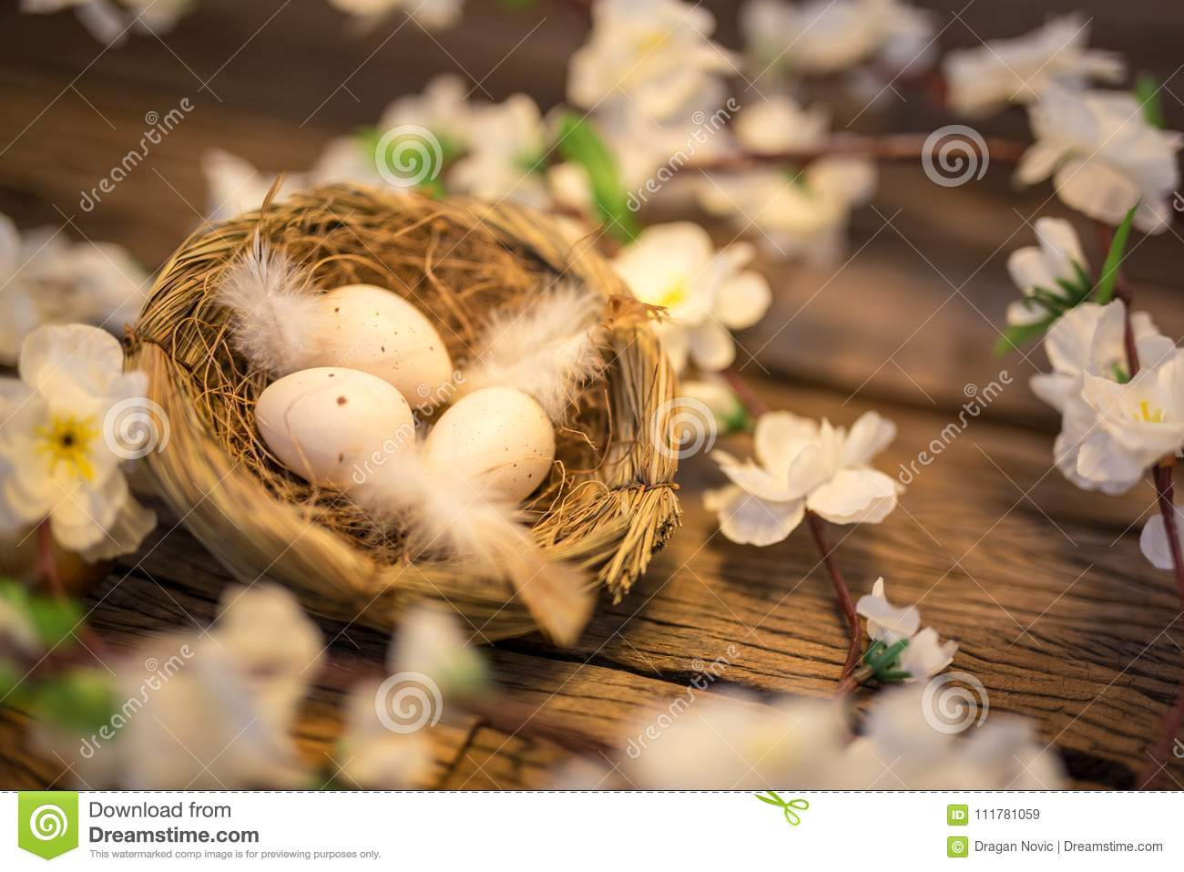 Easter quail eggs in a birds nest on a wooden background