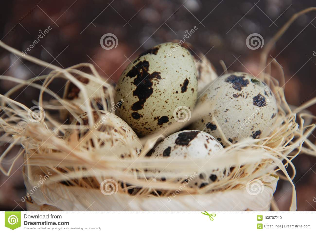 Easter Quail Eggs In Nest. Rusty Metalic Background With ...