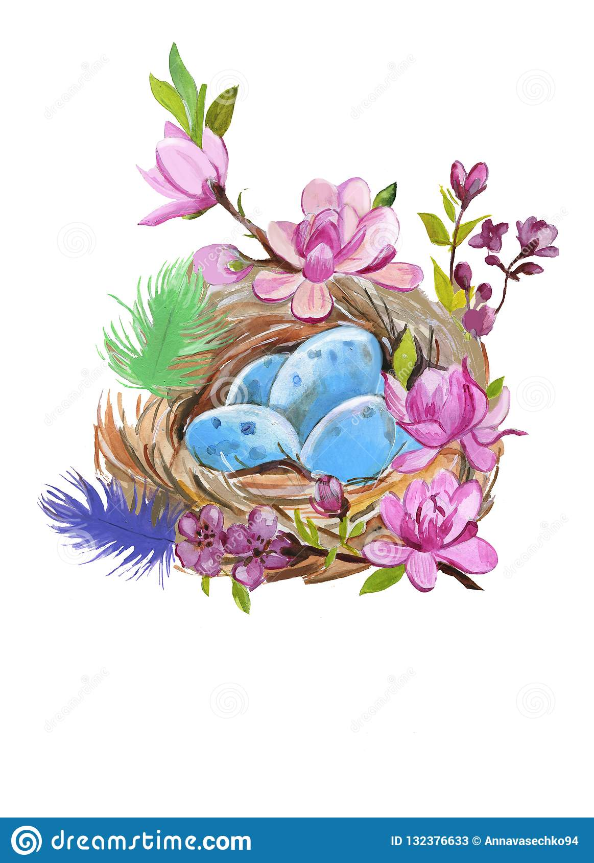 Hand painted watercolor thrush`s nest with eggs on white. Aquarelle nature illustration.