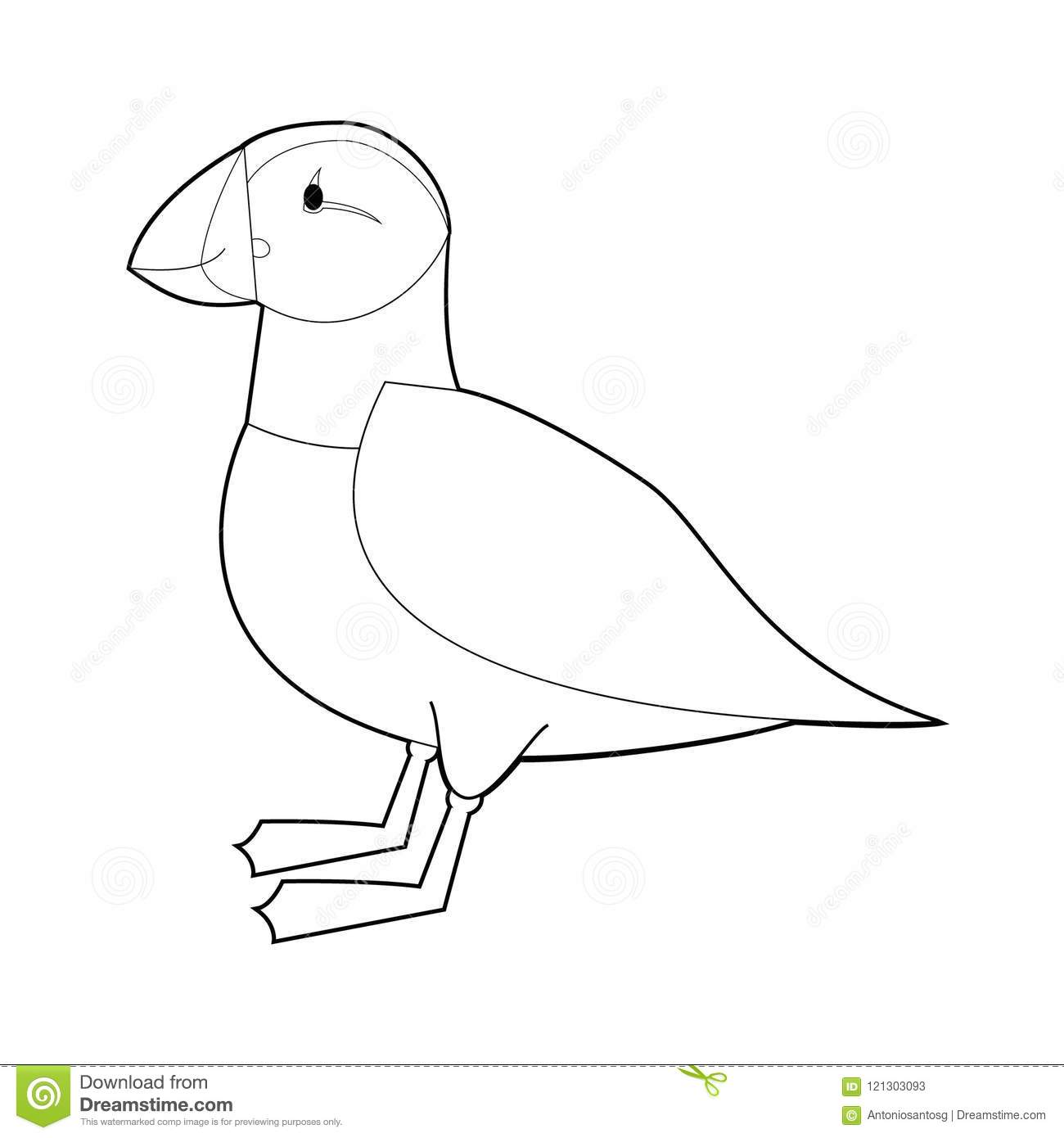 Easy Coloring Drawings Of Animals For Little Kids Puffin Vector Illustration